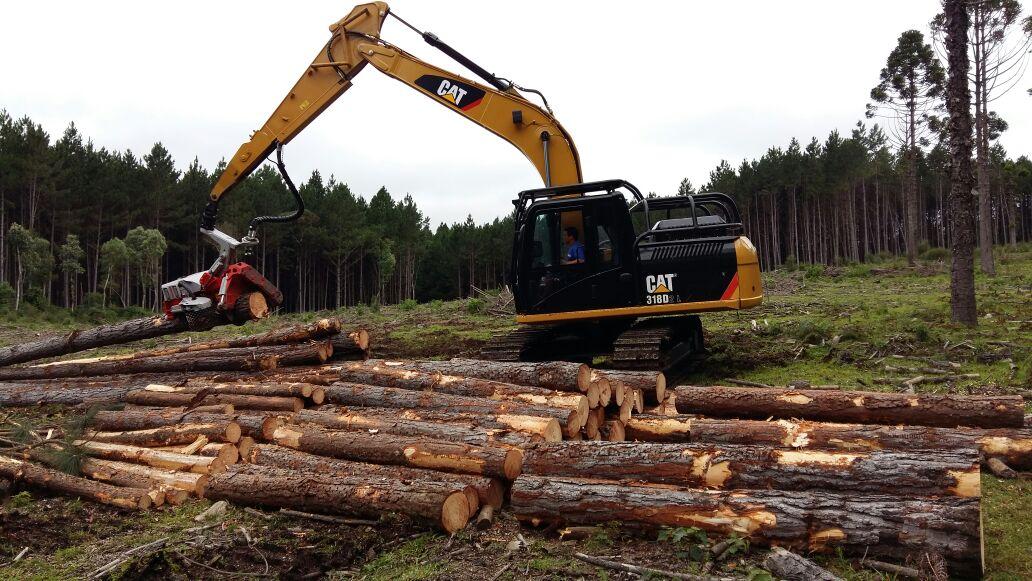 Raw Logs (2)